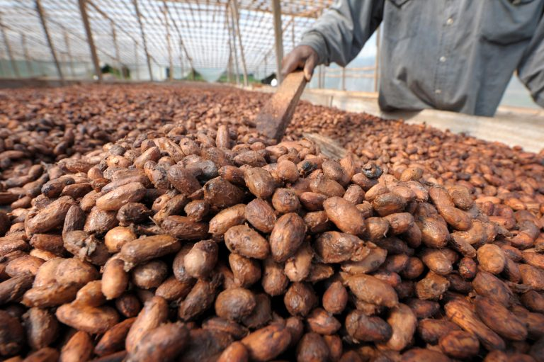Ivory Coast and Ghana pull out of U.S. cocoa trade body